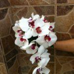 floristeria-maria-luisa-ramos (5)